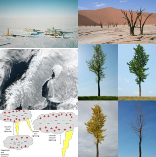 Collage image of Weather