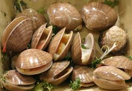 Clams in a Bowl Image