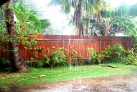 Rain in Hawaii Image