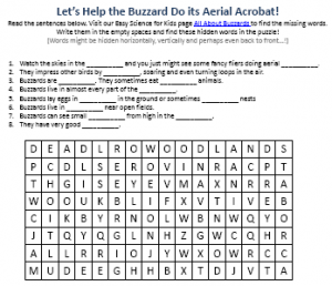 Download the Free Buzzards Worksheet for Kids!