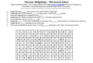 Download the FREE Hedgehogs Hidden Words Puzzle!