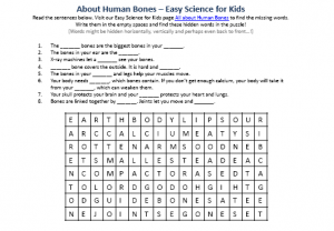 Download the FREE Human Bones Worksheet for Kids!