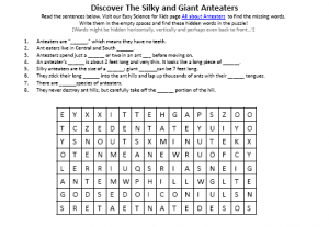 Download our FREE Silky and Giant Anteaters Worksheet for Kids!