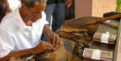 All about Cuba Easy Science for Kids - Cigar Production in Santiago De Cuba