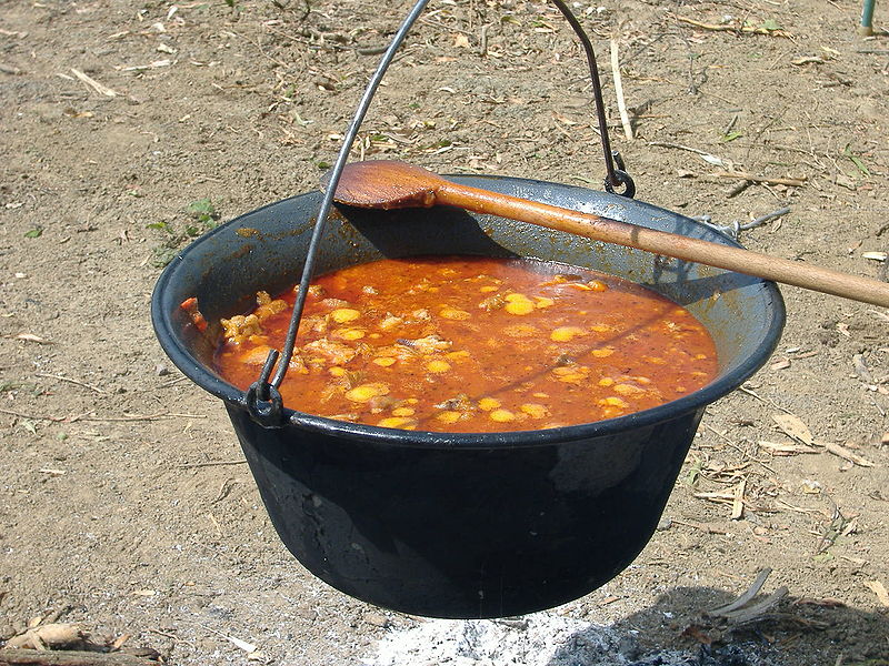Hungarian Goulash Worksheet – FREE Online Earth Science Worksheets
