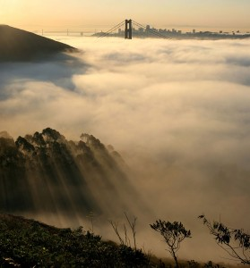 All about Temperate or Mild Climates Fun Science Facts for Kids - Foggy Weather of Temperate Climate Areas image