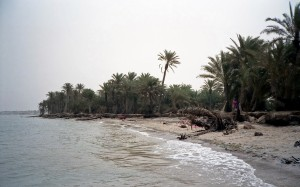 Earth Science Fun Facts for Kids on Yemen - Image of a Beach in Yemen