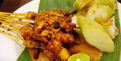 Easy Kids Science Facts on Brunei - image of the Brunei Satay