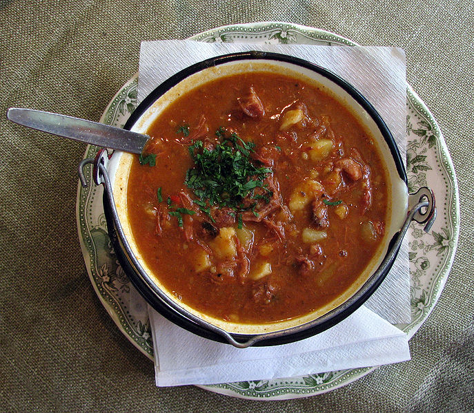 Easy Kids Science Facts All About Hungarian Goulash - image of the Hungarian Goulash Soup