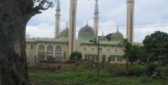Fun Earth Science Facts for Kids on Guinea - Image of the Conakry Mosque in Guinea - Guinea Worksheet