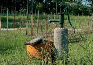 Fun Earth Science for Kids on Where Does my Water Come From - image of a Groundwater Hand Pump
