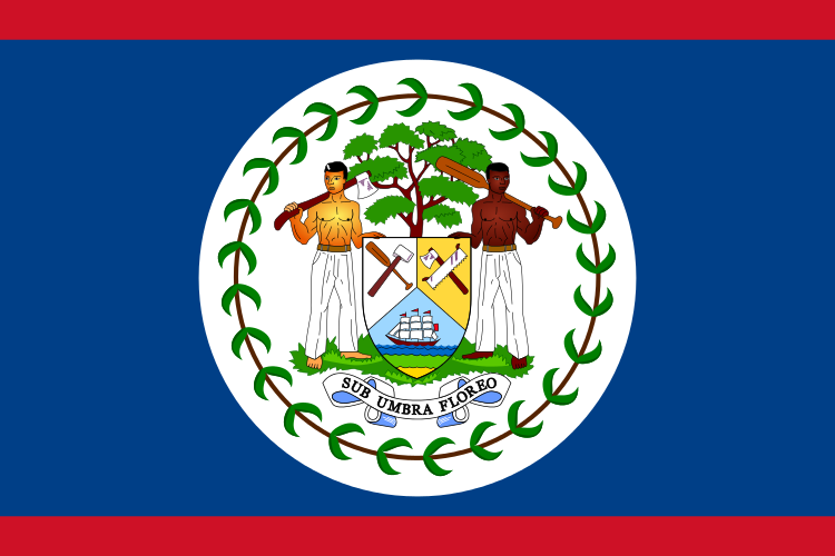 Fun Science Facts for Kids All About Belize - the National Flag of Belize