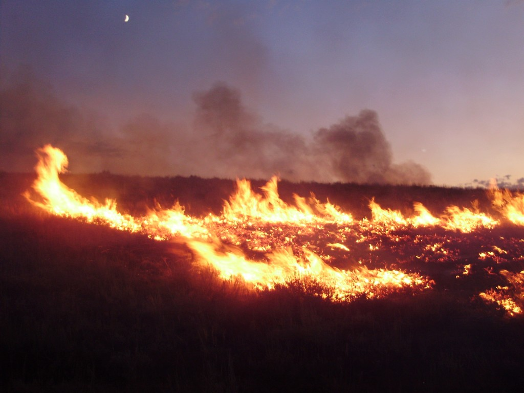 Geography Fun Facts for Kids on Wildfires - Image of a Lightning Sparked Wildfire