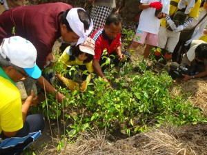 Kids Science Fun Facts All About Taking Care of the Earth - an image of People Replanting Trees