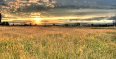 Fun Facts for Kids All About Macedonia - Image of Fields in Macedonia