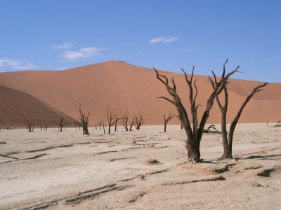 Fun Geography Facts for Kids All About Top 10 Hottest Places on Earth - Image of a Desert