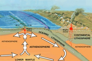 Fun Science Facts for Kids All about Tectonic Plates - Diagram of the Movement of the Earth image