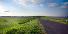 Kids Science Fun Facts All about Netherlands - Grassy Roadside image