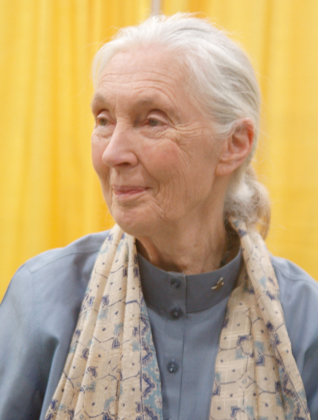 Best Jane Goodall Biography Video for Kids