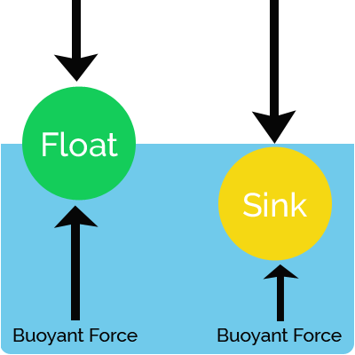 Kids Science Fun Facts All about Buoyancy
